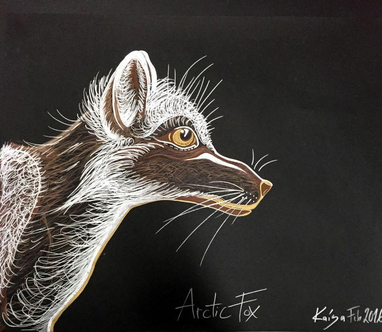 Arctic Fox in Summertime. 2016