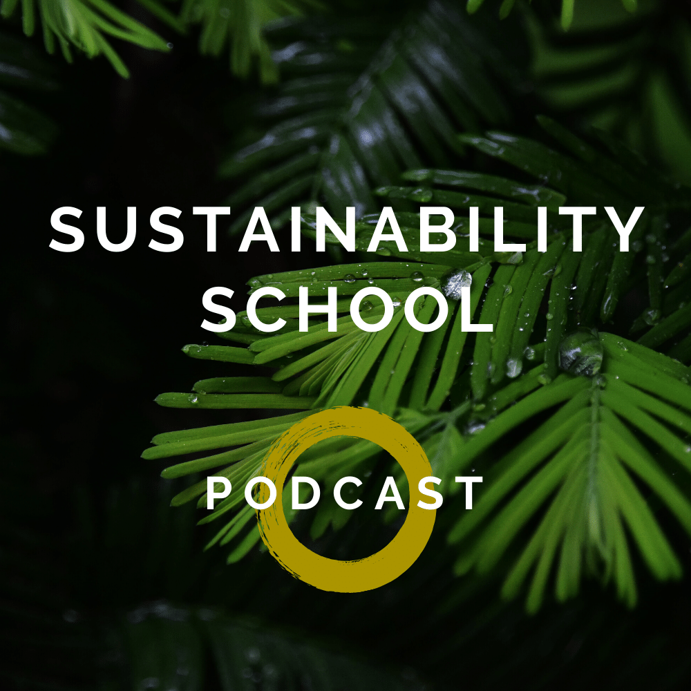 Sustainability School Podcast Kaisa kangro